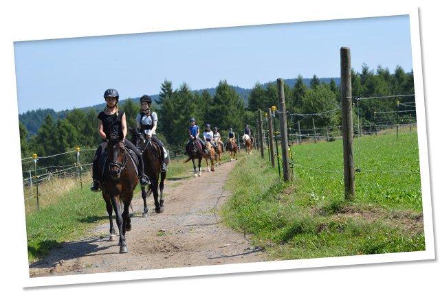Ausritte-Ponyreiten Hof Silberberg