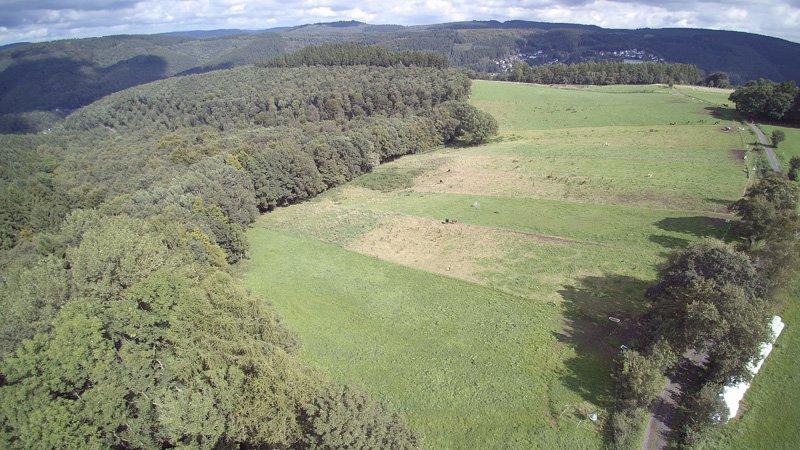 Endlose Weiden im Westerwald