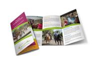 Ponyreiten für Kinder in Daaden