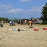 Bei den Reiterspielen konnte jeder zeigen, was er schon kann.