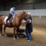 Aufsitzen für den ersten Wettbewerb. Die braven Ponys machen alles mit.