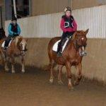 Konzentriert gaben Pferd und Reiter ihr Bestes. Und wurden belohnt.