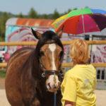 Hier wird er Regenschirm zum Sonnenschein und das Pferd bleibt cool.